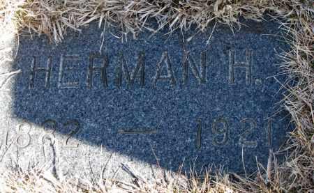 VANDERHEIDE, HERMAN H. - Cedar County, Nebraska | HERMAN H. VANDERHEIDE - Nebraska Gravestone Photos