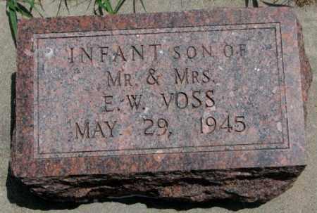 VOSS, INFANT SON - Cedar County, Nebraska | INFANT SON VOSS - Nebraska Gravestone Photos