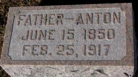 WALZ, ANTON - Cedar County, Nebraska | ANTON WALZ - Nebraska Gravestone Photos