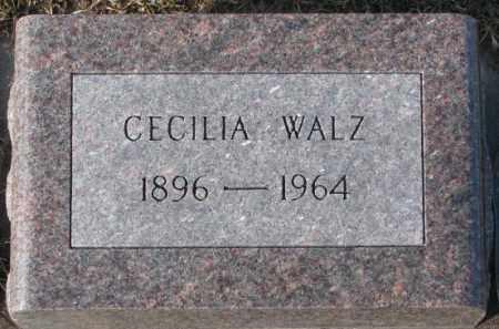 WALZ, CECILIA - Cedar County, Nebraska | CECILIA WALZ - Nebraska Gravestone Photos