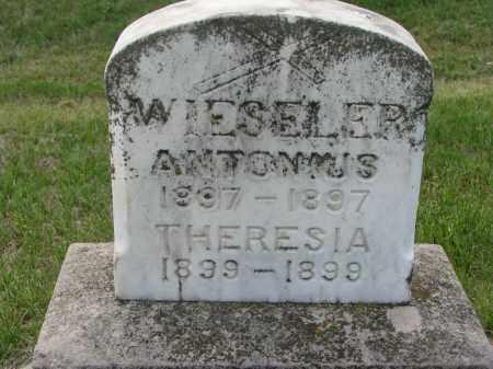 WIESELER, ANTONIUS - Cedar County, Nebraska | ANTONIUS WIESELER - Nebraska Gravestone Photos