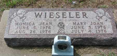 WIESELER, MARY JOAN - Cedar County, Nebraska | MARY JOAN WIESELER - Nebraska Gravestone Photos
