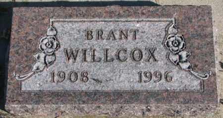 WILLCOX, BRANT - Cedar County, Nebraska   BRANT WILLCOX - Nebraska Gravestone Photos