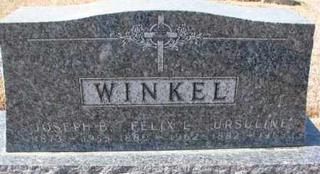 WINKEL, FELIX L. - Cedar County, Nebraska | FELIX L. WINKEL - Nebraska Gravestone Photos