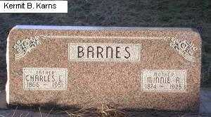 BARNES, MINNIE ANN - Chase County, Nebraska | MINNIE ANN BARNES - Nebraska Gravestone Photos