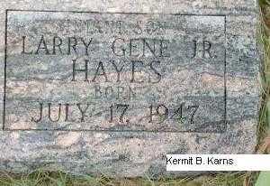 HAYES, LARRY GENE, JR. - Chase County, Nebraska   LARRY GENE, JR. HAYES - Nebraska Gravestone Photos