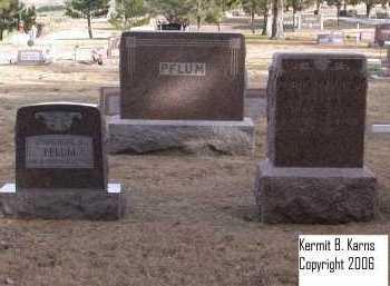 PFLUM, FAMILY - Chase County, Nebraska | FAMILY PFLUM - Nebraska Gravestone Photos