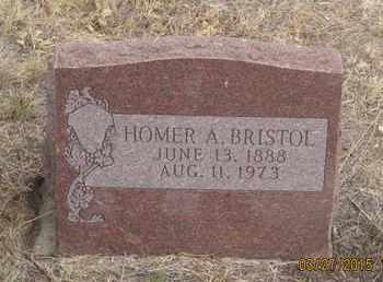 BRISTOL, HOMER  A. - Cherry County, Nebraska | HOMER  A. BRISTOL - Nebraska Gravestone Photos
