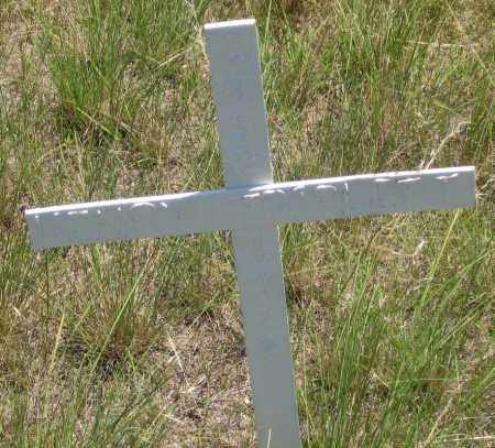 TRIPLETT, HENRY - Cherry County, Nebraska | HENRY TRIPLETT - Nebraska Gravestone Photos