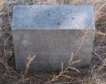 WILLIAMS, CHARLES - Cherry County, Nebraska | CHARLES WILLIAMS - Nebraska Gravestone Photos