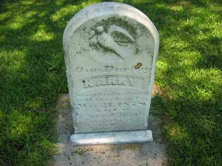 INK, HARRY - Clay County, Nebraska   HARRY INK - Nebraska Gravestone Photos