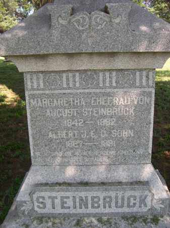 STEINBRUCK, ALBERT J.E.D. - Clay County, Nebraska | ALBERT J.E.D. STEINBRUCK - Nebraska Gravestone Photos