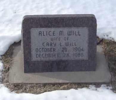 WILL, ALICE - Clay County, Nebraska | ALICE WILL - Nebraska Gravestone Photos