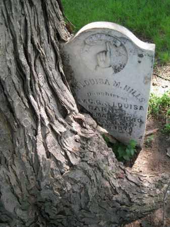 HILLS, LOUISA M - Colfax County, Nebraska   LOUISA M HILLS - Nebraska Gravestone Photos
