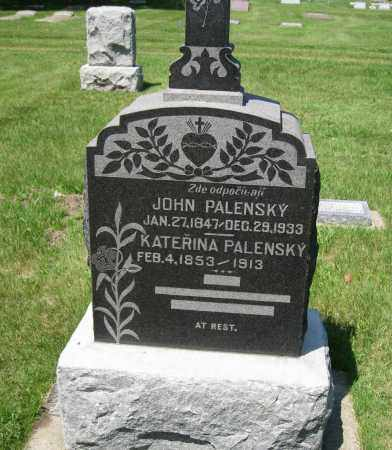 PALENSKY, KATERINA - Colfax County, Nebraska | KATERINA PALENSKY - Nebraska Gravestone Photos