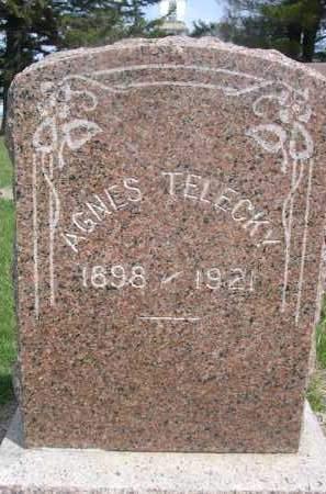 TELECKY, AGNES - Colfax County, Nebraska | AGNES TELECKY - Nebraska Gravestone Photos