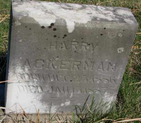 ACKERMAN, HARRY - Cuming County, Nebraska | HARRY ACKERMAN - Nebraska Gravestone Photos