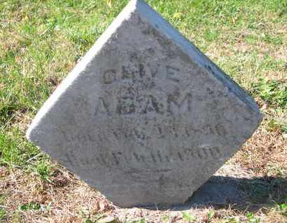 ADAM, OLIVE - Cuming County, Nebraska   OLIVE ADAM - Nebraska Gravestone Photos