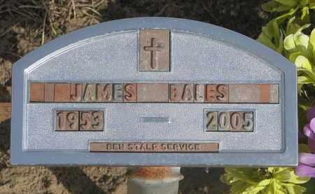BALES, JAMES - Cuming County, Nebraska | JAMES BALES - Nebraska Gravestone Photos