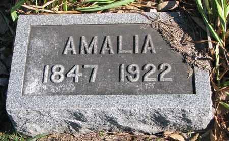 BERTHOLD, AMALIA - Cuming County, Nebraska | AMALIA BERTHOLD - Nebraska Gravestone Photos