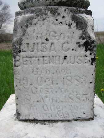 BETTENHAUSEN, LUISA C.M. (CLOSE UP) - Cuming County, Nebraska | LUISA C.M. (CLOSE UP) BETTENHAUSEN - Nebraska Gravestone Photos
