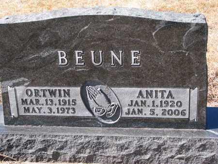 BEUNE, ANITA - Cuming County, Nebraska | ANITA BEUNE - Nebraska Gravestone Photos