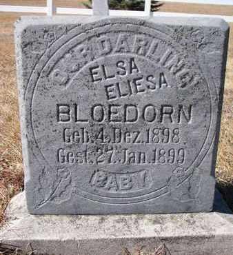 BLOEDORN, ELSA ELIESA - Cuming County, Nebraska | ELSA ELIESA BLOEDORN - Nebraska Gravestone Photos