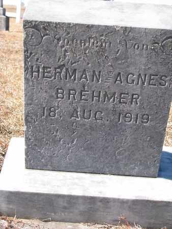 BREHMER, HERMAN AGNES - Cuming County, Nebraska | HERMAN AGNES BREHMER - Nebraska Gravestone Photos
