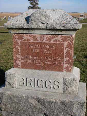 BRIGGS, ALICE M. - Cuming County, Nebraska | ALICE M. BRIGGS - Nebraska Gravestone Photos