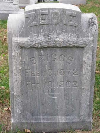 BRIGGS, ZED E. - Cuming County, Nebraska | ZED E. BRIGGS - Nebraska Gravestone Photos