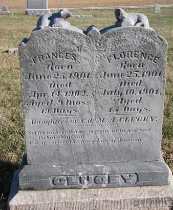 CLUGEY, FRANCES - Cuming County, Nebraska | FRANCES CLUGEY - Nebraska Gravestone Photos