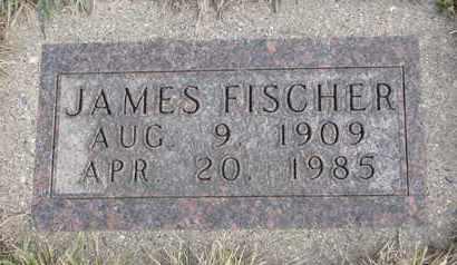 FISCHER, JAMES - Cuming County, Nebraska | JAMES FISCHER - Nebraska Gravestone Photos