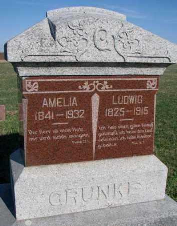 GRUNKE, LUDWIG - Cuming County, Nebraska | LUDWIG GRUNKE - Nebraska Gravestone Photos