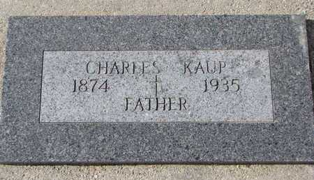 KAUP, CHARLES - Cuming County, Nebraska   CHARLES KAUP - Nebraska Gravestone Photos