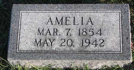HILL, AMELIA - Cuming County, Nebraska | AMELIA HILL - Nebraska Gravestone Photos