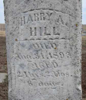 HILL, HARRY A. (CLOSEUP) - Cuming County, Nebraska | HARRY A. (CLOSEUP) HILL - Nebraska Gravestone Photos
