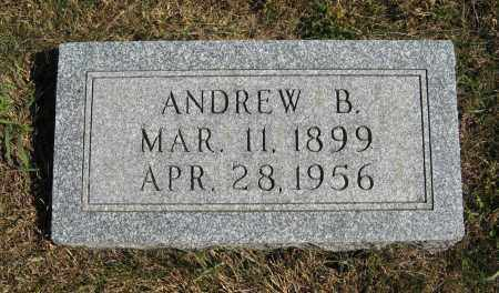 JOHNSON, ANDREW B. - Cuming County, Nebraska | ANDREW B. JOHNSON - Nebraska Gravestone Photos