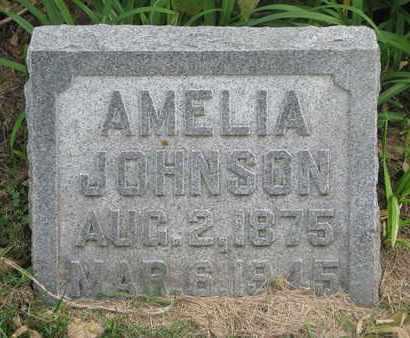 JOHNSON, AMELIA - Cuming County, Nebraska | AMELIA JOHNSON - Nebraska Gravestone Photos