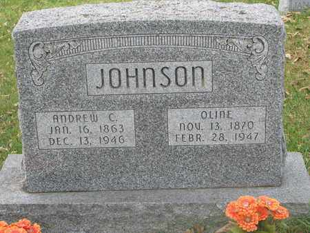 JOHNSON, OLINE - Cuming County, Nebraska | OLINE JOHNSON - Nebraska Gravestone Photos