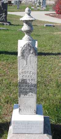 JOHNSON, ANDREW CHARLES - Cuming County, Nebraska | ANDREW CHARLES JOHNSON - Nebraska Gravestone Photos