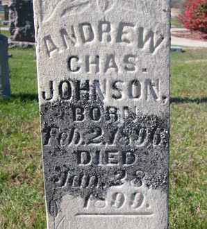 JOHNSON, ANDREW CHARLES (CLOSE UP) - Cuming County, Nebraska | ANDREW CHARLES (CLOSE UP) JOHNSON - Nebraska Gravestone Photos