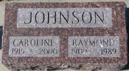 JOHNSON, CAROLINE - Cuming County, Nebraska | CAROLINE JOHNSON - Nebraska Gravestone Photos