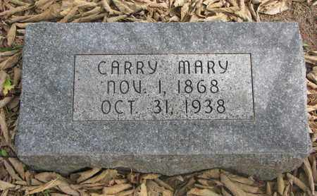 JOHNSON, CARRY MARY - Cuming County, Nebraska | CARRY MARY JOHNSON - Nebraska Gravestone Photos