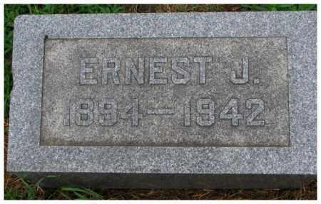 JOHNSON, ERNEST J. - Cuming County, Nebraska | ERNEST J. JOHNSON - Nebraska Gravestone Photos