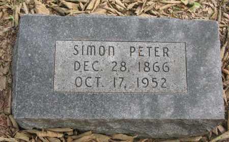 JOHNSON, SIMON PETER - Cuming County, Nebraska | SIMON PETER JOHNSON - Nebraska Gravestone Photos