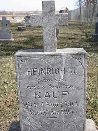KAUP, HEINRICH J. - Cuming County, Nebraska | HEINRICH J. KAUP - Nebraska Gravestone Photos