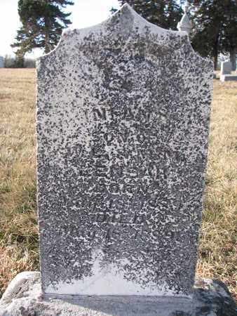 LENSAR, INFANT SON - Cuming County, Nebraska | INFANT SON LENSAR - Nebraska Gravestone Photos