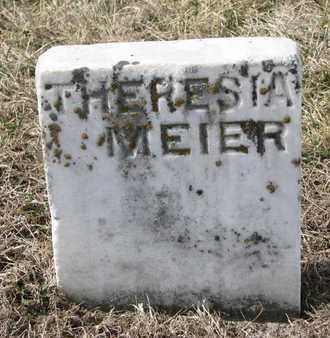 MEIER, THERESIA - Cuming County, Nebraska | THERESIA MEIER - Nebraska Gravestone Photos