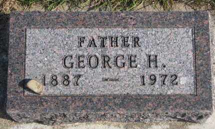 MEYER, GEORGE H. - Cuming County, Nebraska | GEORGE H. MEYER - Nebraska Gravestone Photos
