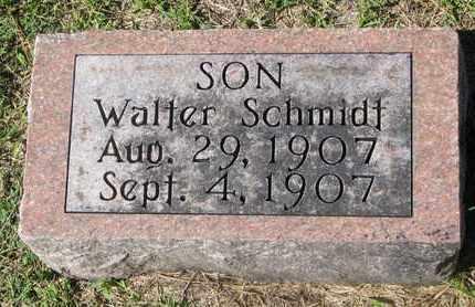 SCHMIDT, WALTER - Cuming County, Nebraska | WALTER SCHMIDT - Nebraska Gravestone Photos